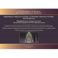 Периферическая нервная система. Автономная нервная система. Органы чувств: рабочая тетрадь