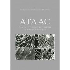 Атлас ультраструктуры микробиоты кишечника человека